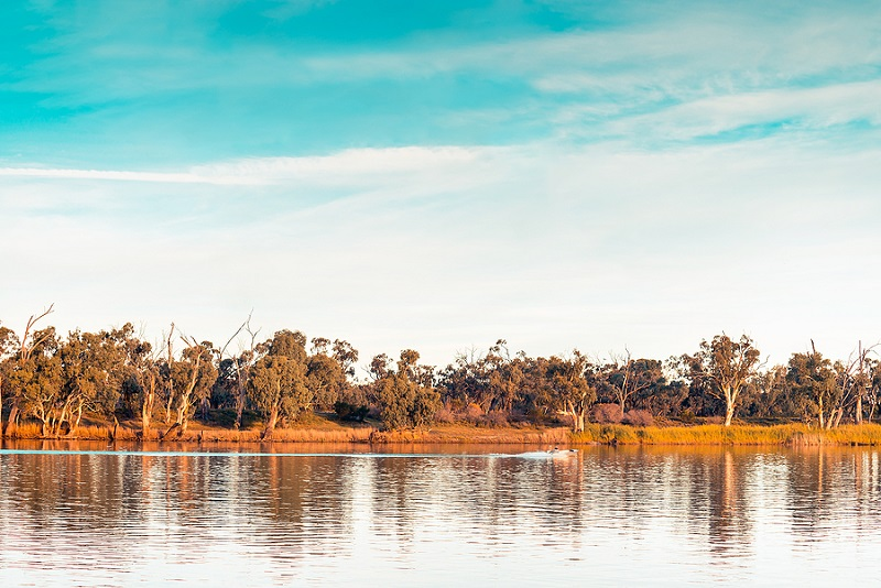 Murray River At Sunset